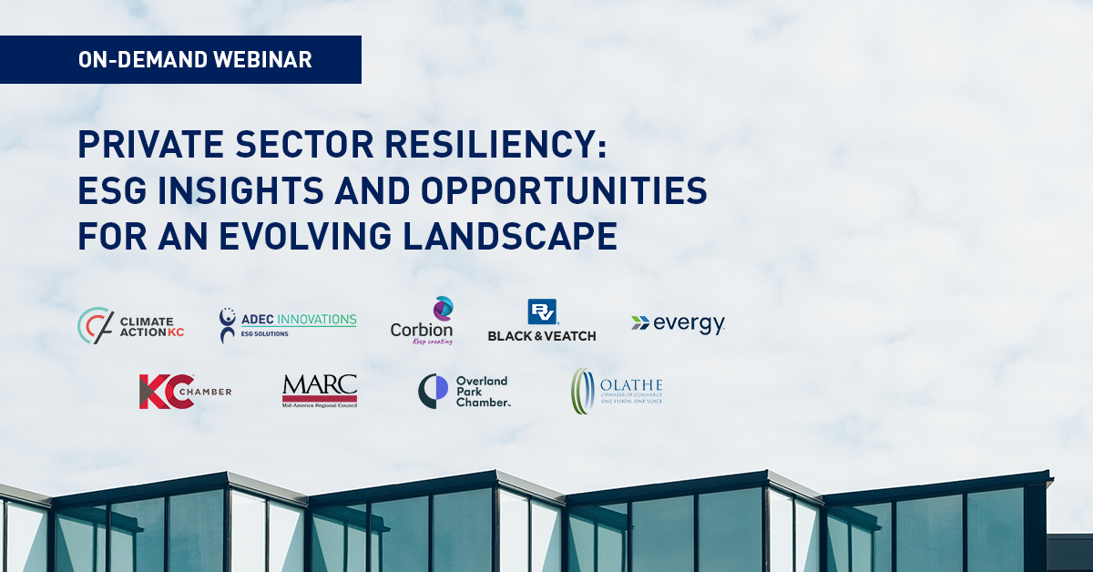 Webinar Recap: Private Sector Resiliency - ESG Insights and Opportunities