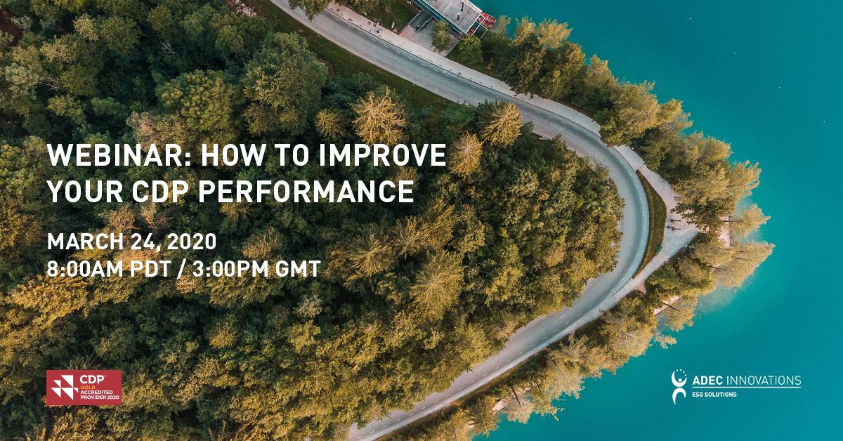 How to Improve Your CDP Response for 2020